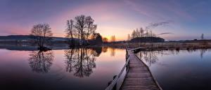 Обои Швейцария Озеро Панорамная Мосты Утро Деревьев Hüttwilersee Природа