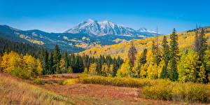 Фотография Штаты Осень Горы Пейзаж Деревья Colorado Природа