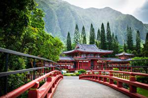 Фотография Штаты Мосты Горы Храмы Гавайи Дерево Oahu, Byodo-In Temple, Ahuimanu