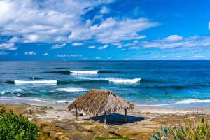 Фотография Штаты Берег Калифорнии Пляж Windandsea Beach Природа