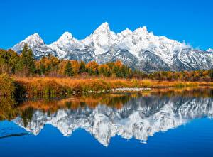 Фотография Штаты Гора Парки Осенние Деревьев Grand Teton National Park, Wyoming