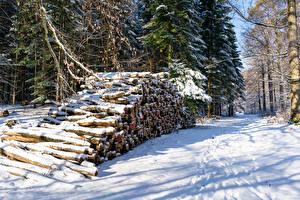 Фото Зима Леса Снег Бревно