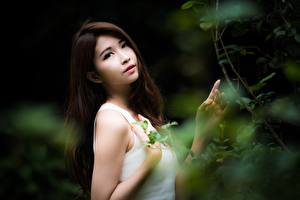 Картинки Азиатка Размытый фон Ветвь Брюнеток Взгляд Рука Девушки