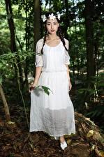 Фото Азиаты Брюнеток Коса Венком Платья молодая женщина