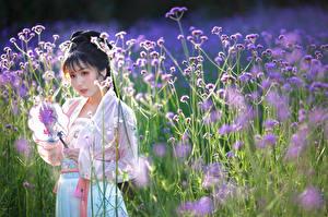 Фотография Азиаты Луга Платье Боке молодая женщина
