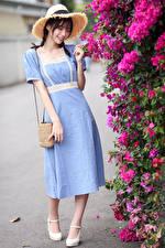 Фотография Азиаты Сумка Платье Шляпы девушка