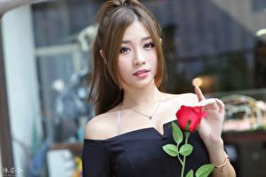 Фото Азиаты Розы Размытый фон Шатенки Взгляд Рука молодые женщины