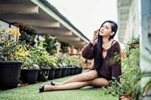 Фотография Азиаты Сидя Размытый фон Ноги Брюнетки молодая женщина