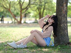 Картинка Азиаты Сидящие Ног Ствол дерева Боке молодые женщины