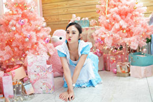 Фотографии Азиатки Униформа Горничная Новогодняя ёлка Коробка Подарки молодые женщины