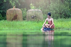 Картинки Азиаты Брюнетка Трава Сидит Тумана Руки washing девушка