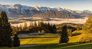 Фото Австрия Горы Луга Альп Ель Туман