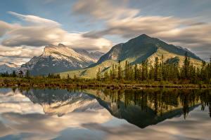 Фото Канада Парк Горы Озеро Банф Мхом Ели Природа