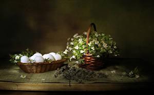 Фотографии Пасха Морозник Корзинка Ветвь Яйцо цветок Еда