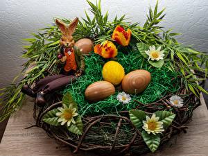 Обои для рабочего стола Пасха Кролик Гнездо Яйца Траве Дизайна Продукты питания Цветы