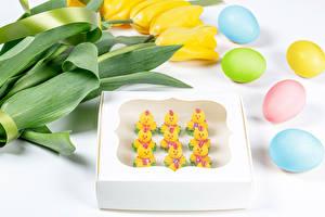 Картинка Пасха Тюльпаны Цыплята Пирожное Белом фоне Желтая Яйца Разноцветные Еда Цветы