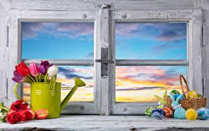 Картинки Пасха Тюльпаны Кролики Окно Корзина Яйцо цветок Еда