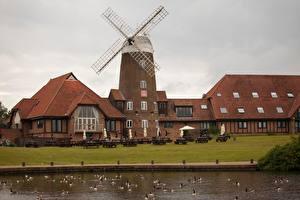 Фотографии Англия Пруд Утки Ветряная мельница Кафе Milton Keynes, Buckinghamshire County