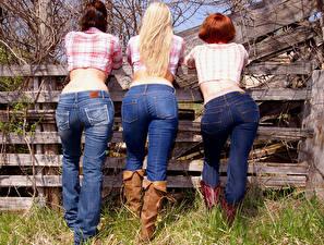 Фотография Ограда Трое 3 Вид сзади Рыжих Блондинки Спина Ноги Сапоги Джинсы Ягодицы девушка
