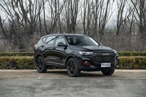 Фотографии Haval Китайская Кроссовер Черные Металлик H6 GT, 2021 авто