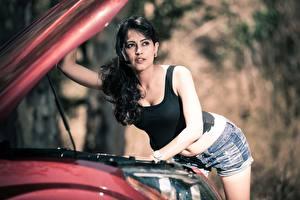 Обои Индийские Размытый фон Брюнеток Смотрит Рука Майка Шорты Disha Patani Знаменитости Девушки Автомобили