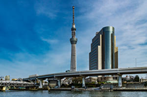 Фото Япония Токио Дома Башня Taito Ward Города