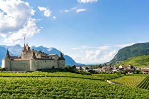 Обои для рабочего стола Швейцария Замок Здания Поля Aigle Castle город