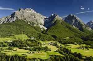 Картинка Швейцария Гора Леса Альп Мхом Село Tarasp Природа