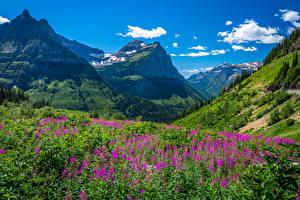 Обои Америка Горы Парки Glacier National Park Природа