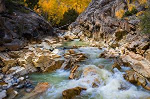 Картинка США Реки Камень Скала Colorado