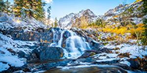 Фотография США Водопады Горы Калифорния Дерево Lundy Canyon Природа