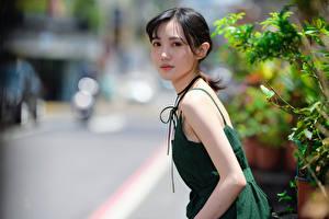 Фотографии Азиатки Боке Платье Смотрит молодые женщины
