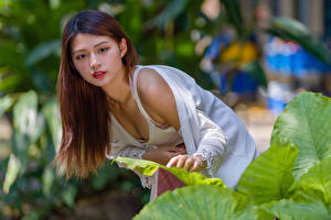 Картинка Азиаты Поза Боке Взгляд