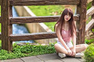 Обои Азиаты Сидя Взгляд Шатенки девушка