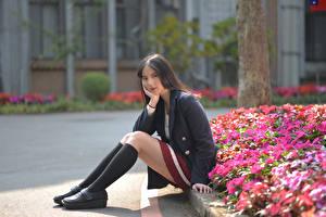 Картинка Азиаты Сидит Ноги Гольфы Пиджак Смотрит девушка