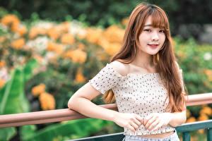 Картинка Азиаты Улыбка Взгляд Размытый фон молодые женщины
