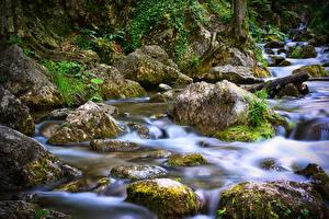 Фотографии Австрия Камень Ручей Мхом Myrafälle Природа