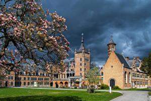 Обои для рабочего стола Бельгия Весна Замки Ландшафтный дизайн Цветущие деревья Газоне Mortsel, Castle Cantecroy Города