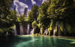 Картинка Хорватия Парк Водопады Озеро Скала Дерево Plitvice Lakes National Park