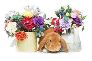Обои для рабочего стола Пасха Букеты Кролик