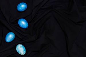 Фотография Пасха Яйцами Голубые Шаблон поздравительной открытки Черный фон Ткань Цветы