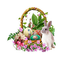 Фотографии Пасха Кролик Корзина Яйца Белый фон