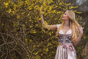 Обои Цветущие деревья Блондинка На ветке Волосы Руки Платье Doris девушка