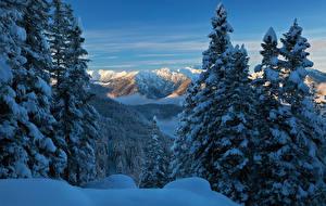 Фото Германия Горы Зима Бавария Ели Снегу above lake Eibsee