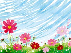 Картинки Луга Рисованные Космея Цветы