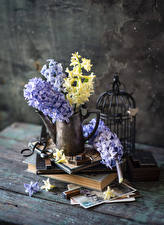 Обои для рабочего стола Гиацинты Доски Ваза Книги цветок