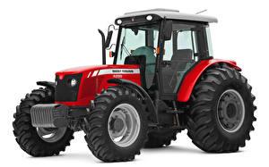 Фотографии Трактора Красных Белым фоном Massey Ferguson 4299 Cabinado, 2010-14