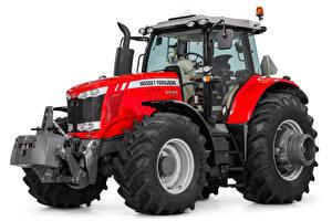 Обои Трактор Красный Белый фон Massey Ferguson 7725, 2017 --