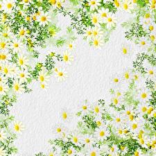 Картинки Рисованные Текстура Бумаге Ветвь Цветы