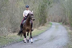 Фотография Дороги Лошади Шлем Сидящие молодые женщины